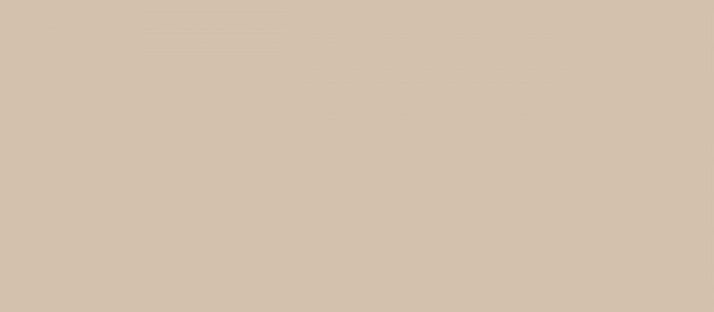Idi_studio_Acrylic_camel